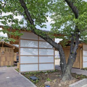 亀崎公園の再編 既設の桜の木を避けるように建築が配される